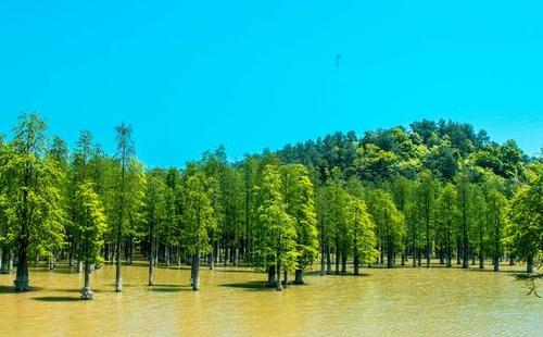 杭州青山湖好玩吗?