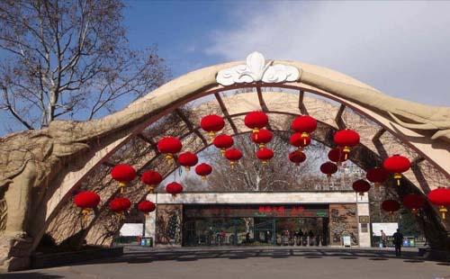 上海动物园门票价格是多少  上海动物园好玩吗