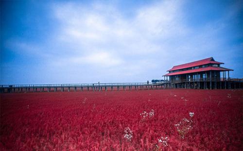 红海滩自驾游攻略 盘锦有什么旅游景点