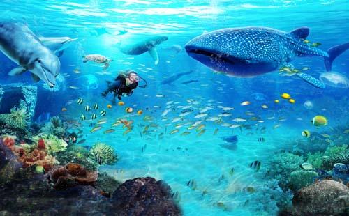 珠海长隆海洋王国旅游攻略  珠海长隆海洋王国门票是多少