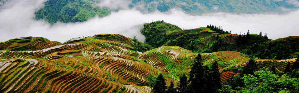 桂林如何去龙脊梯田 龙脊梯田旅游交通攻略