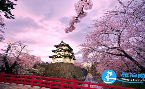 去日本看樱花拍照穿什么衣服 日本樱花季拍照攻略