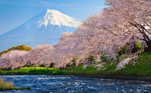 日本的富士山几月去比较好 日本富士山最适合去的时间