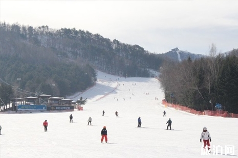 韩国滑雪攻略 2019华川山鳟鱼冰雪节时间+地点
