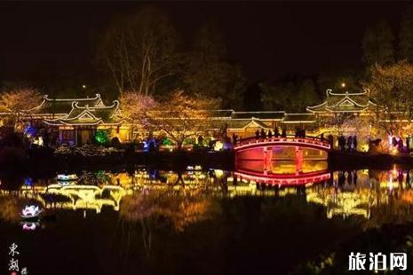 武汉东湖夜樱攻略