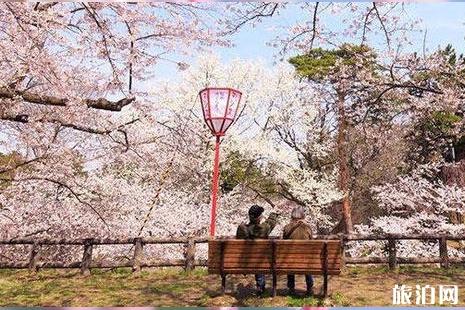 4月上海迪士尼有樱花吗 2019上海迪士尼春季赏花指南