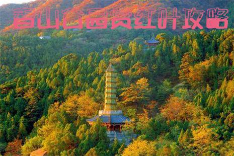 北京香山公园赏红叶路线 北京香山公园赏红叶攻略