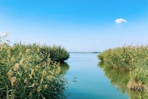 宁夏沙湖旅游精品线路 亲子游路线