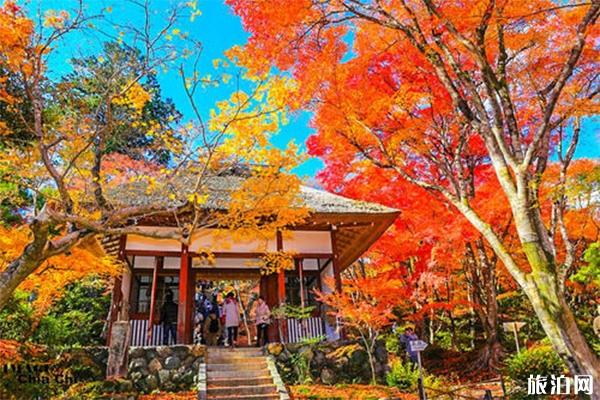 日本京都岚山一日游玩攻略 景点+交通+路线