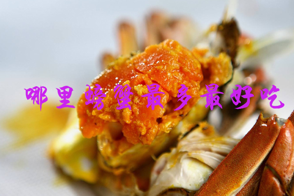 吃螃蟹去哪里 哪里螃蟹最多最好吃