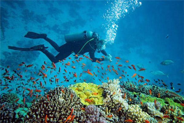 甲米岛潜水带潜水服吗