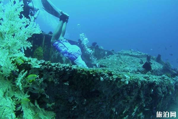 潜水为什么穿湿衣 潜水湿衣选择办法