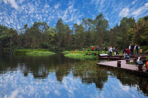 2020广州海珠国家湿地公园门票天气及景点介绍