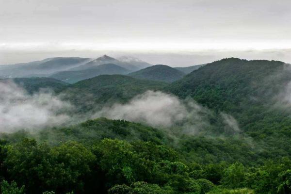 2020湖北偏头山国家森林公园地址交通及游玩攻略