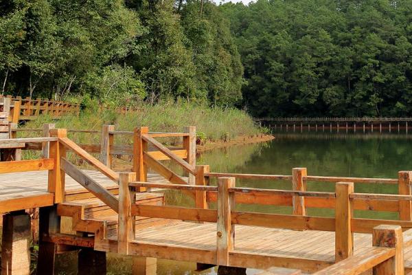 2020梅子湖公园旅游攻略 梅子湖公园有哪些景点