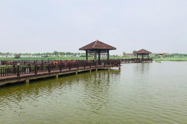 2021沧州南大港湿地门票及旅游攻略
